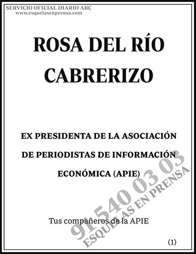 Rosa del Río Cabrerizo